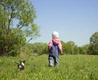 Menina com cão pequeno Imagem de Stock