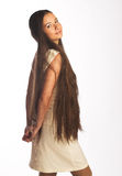 Menina com cabelo longo Imagem de Stock