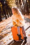 Menina com cabelo louro no fundo do outono fotos de stock