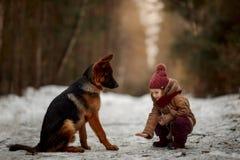 Menina com cachorrinho dos meses do pastor alemão o 6o na mola adiantada fotos de stock