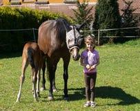 Menina com cavalos Imagens de Stock Royalty Free