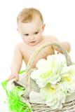 Menina com cesta Foto de Stock Royalty Free