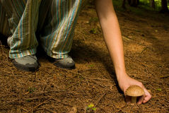 Menina com cogumelo Foto de Stock