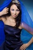 Menina com coroa e véu do diamante Imagem de Stock Royalty Free