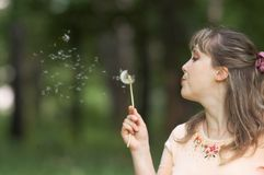 Menina com dente-de-leão Fotos de Stock Royalty Free
