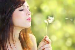 Menina com dente-de-leão Imagem de Stock Royalty Free