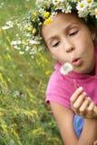 Menina com dente-de-leão Fotos de Stock