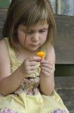 Menina com a flor amarela da papoila Fotografia de Stock