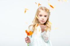 Menina com flor do gerbera imagem de stock royalty free