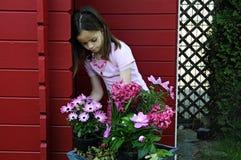 Menina com flores cor-de-rosa fotos de stock royalty free