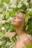 Menina com flores da pássaro-cereja Fotografia de Stock Royalty Free