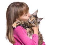 Menina com gatinho de Maine Coon Foto de Stock Royalty Free