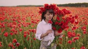 A menina com a grinalda em sua cabeça recolhe flores vermelhas da papoila no campo florescido, movimento lento video estoque