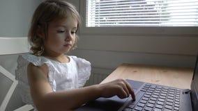 A menina com interesse usa o portátil que senta-se na tabela Tiro da zorra vídeos de arquivo