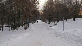 menina com inverno da pintura da armação em Moscou Imagens de Stock