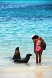 Menina com leões de mar Imagem de Stock