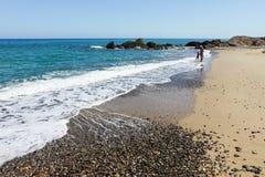 Menina com a matriz na praia Fotografia de Stock