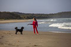 Menina com o cão na praia Imagem de Stock