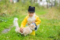 Menina com o gato desabrigado no parque do outono Conceito da amizade Fotografia de Stock Royalty Free
