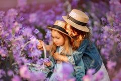 Menina com a rede da borboleta exterior na menina do sunsetLittle que funde a flor do dente-de-le?o no por do sol fotos de stock royalty free