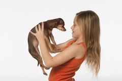 Menina com retriever dourado e chihuahua Imagem de Stock