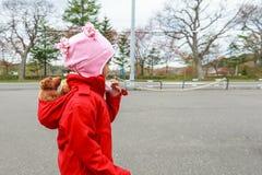 Menina com seu urso pequeno Foto de Stock