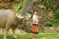 Menina com um búfalo Fotografia de Stock