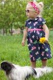 Menina com um cão. Imagem de Stock Royalty Free