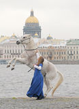 A menina com um cavalo no quay Fotografia de Stock Royalty Free