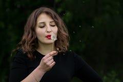 Menina com um dente-de-leão na mão Imagem de Stock Royalty Free