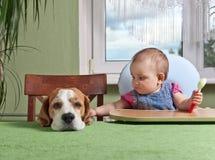 Menina com um jantar de espera do cão imagem de stock royalty free