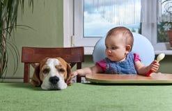 Menina com um jantar de espera do cão Imagem de Stock
