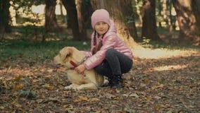 Menina com um Labrador video estoque