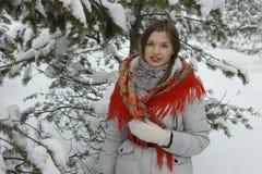 Menina com um lenço vermelho Imagem de Stock Royalty Free
