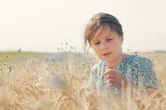Menina com uma centáurea Fotografia de Stock