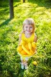 Menina com uma cesta do fruto fotos de stock royalty free