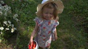 Menina com uma cubeta pequena das morangos video estoque