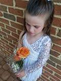 Menina com uma rosa imagens de stock