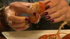 A menina come às lagostas vídeos de arquivo