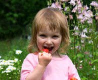 A menina come a morango Fotografia de Stock Royalty Free