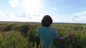 A menina corre ao longo do campo de trigo verde filme