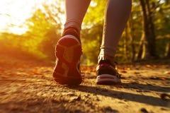 Menina da aptidão que corre no por do sol Imagem de Stock Royalty Free