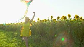Menina da beleza com o cabelo vermelho longo que corre no campo amarelo do girassol com um papagaio Mulher feliz ao ar livre teen vídeos de arquivo