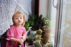 A menina da casa em uma janela com cactos Fotos de Stock