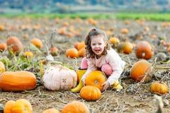 Menina da criança com lote das abóboras no campo Imagem de Stock Royalty Free