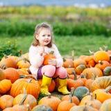 Menina da criança com lote das abóboras no campo Foto de Stock Royalty Free