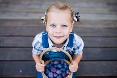 Menina da criança pequena com a cesta completa das ameixas Imagens de Stock Royalty Free