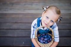 Menina da criança pequena com a cesta completa das ameixas Foto de Stock