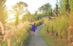 Menina da criança pequena de vista traseira que usa a mão a tocar a grama selvagem no nascer do sol imagem de stock