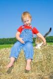 Menina da criança que diz o olá! a uma vaquinha. Fotografia de Stock